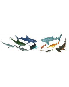 Shark Set 11pcs