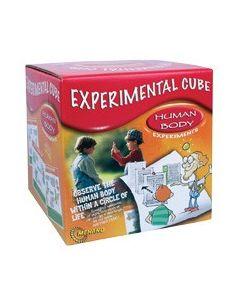 Human Body Experimental Cube