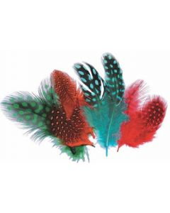 Feathers Guinea Fowl 10g