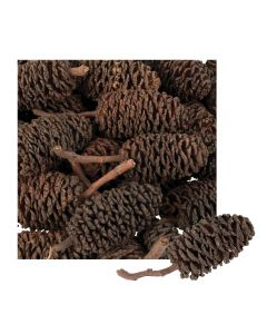 Mini Bud Cones in Calico Bag 220g