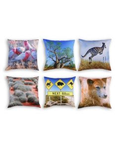 Outback Cushions Set of 6