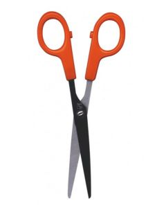 Scissors Adult 15cm L