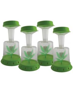 Bug Catcher, Viewer and Keeper  Set of 4